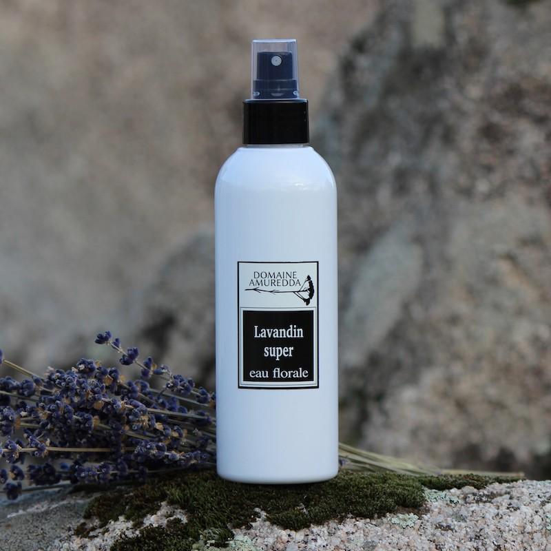 Lavandin super eau florale hydrolat bio corse Domaine Amuredda